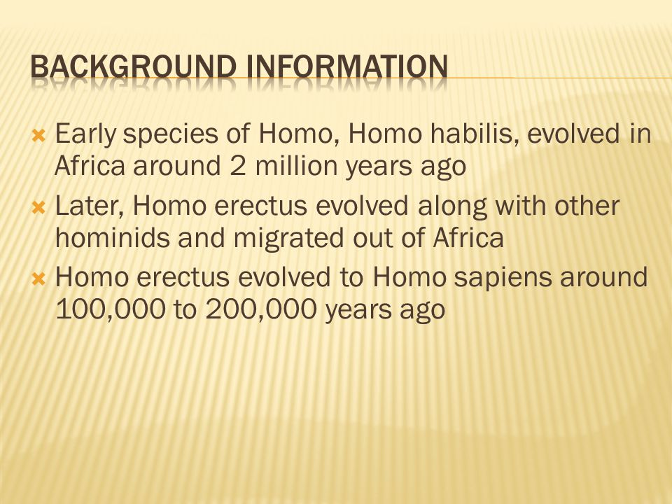  Early species of Homo, Homo habilis, evolved in Africa around 2 million years ago  Later, Homo erectus evolved along with other hominids and migrated out of Africa  Homo erectus evolved to Homo sapiens around 100,000 to 200,000 years ago