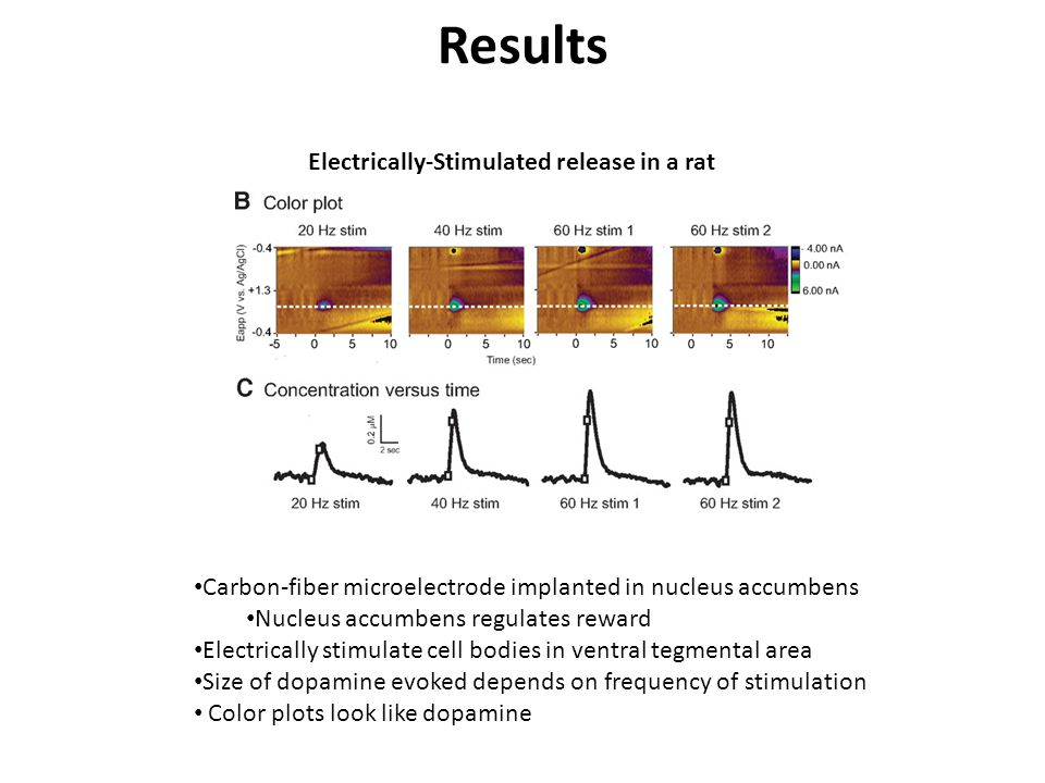 Results Electrically-Stimulated release in a rat Carbon-fiber microelectrode implanted in nucleus accumbens Nucleus accumbens regulates reward Electrically stimulate cell bodies in ventral tegmental area Size of dopamine evoked depends on frequency of stimulation Color plots look like dopamine
