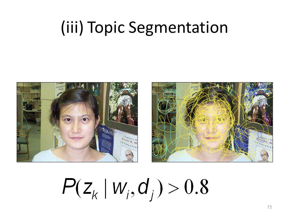 (iii) Topic Segmentation 73
