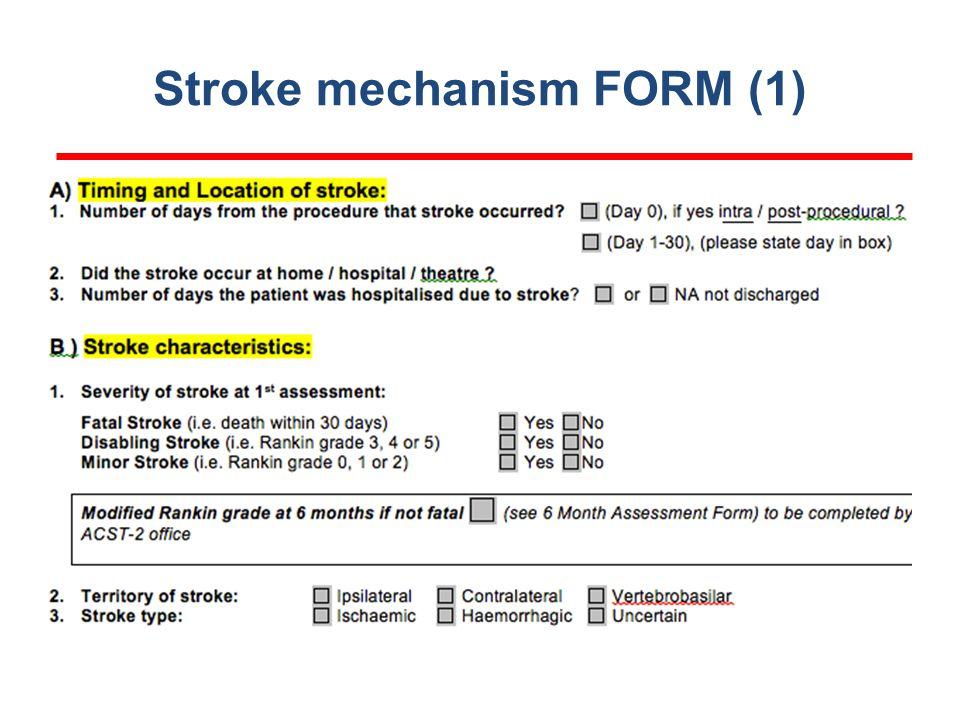 Stroke mechanism FORM (1)