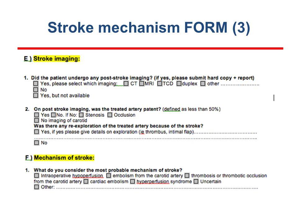 Stroke mechanism FORM (3)