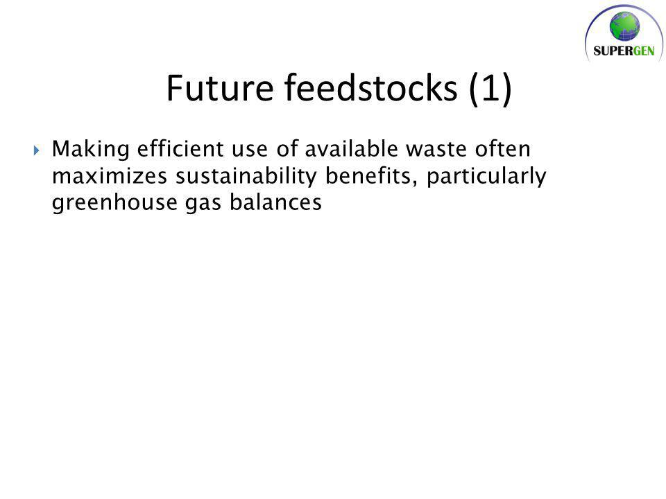 Conclusions – Waste resources will be even more significant in future – Integration of bioenergy with the global food system is important – Imports are essential for UK targets and flexible technologies are needed to be resilient to their characteristics – Second generation technologies improve many sustainability issues because of their higher efficienty potential – The interfaces between the food system, land system, energy system and biomaterials demands must be taken into account in bioenergy resource assessments