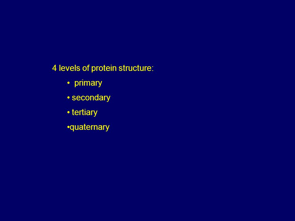 4 levels of protein structure: primary secondary tertiary quaternary