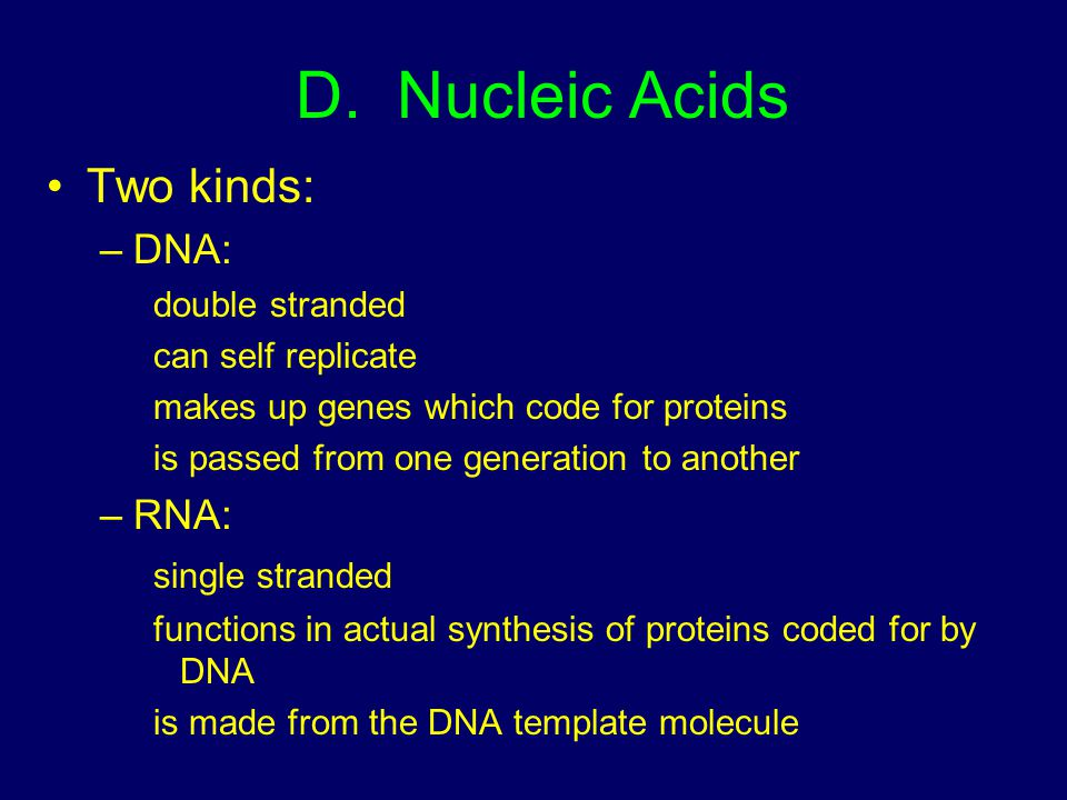 D. Nucleic Acids Two kinds: –DNA: double stranded can self replicate makes up genes which code for proteins is passed from one generation to another –