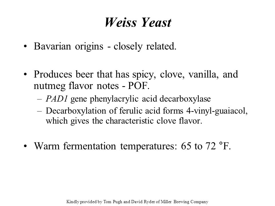 Weiss Yeast Bavarian origins - closely related. Produces beer that has spicy, clove, vanilla, and nutmeg flavor notes - POF. –PAD1 gene phenylacrylic