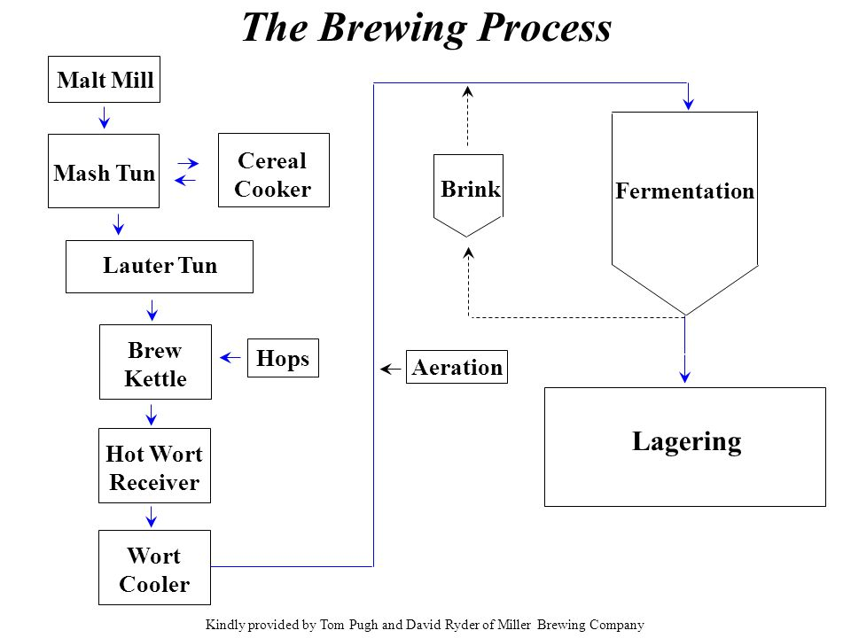 The Brewing Process Malt Mill Mash Tun Cereal Cooker Lauter Tun Brew Kettle Hot Wort Receiver Wort Cooler Fermentation Brink Aeration Lagering Hops Ki