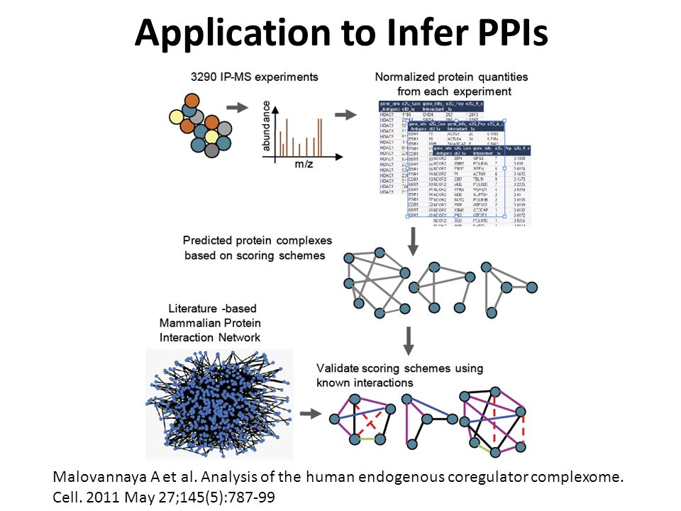 Application to Infer PPIs Malovannaya A et al. Analysis of the human endogenous coregulator complexome. Cell. 2011 May 27;145(5):787-99