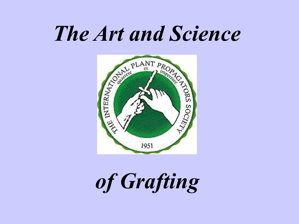 The Art and Science of Grafting