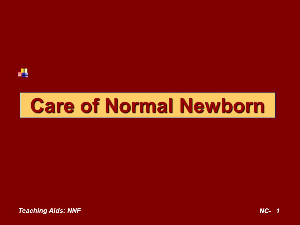 Teaching Aids: NNF NC-2 Principles of care at birth Establishment of respiration Prevention of hypothermia Establishment of breastfeeding Prevention of infection Identification of at risk neonates