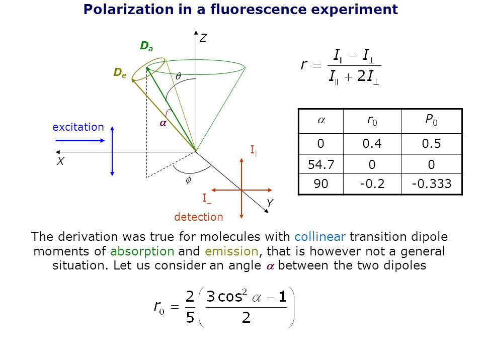 Polarization in a fluorescence experiment Z Y X excitation detection I  II The derivation was true for molecules with collinear transition dipole