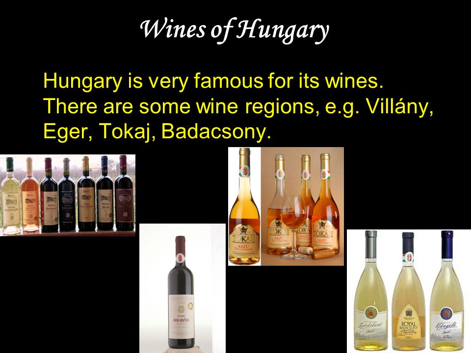 Wines of Hungary Hungary is very famous for its wines. There are some wine regions, e.g. Villány, Eger, Tokaj, Badacsony.