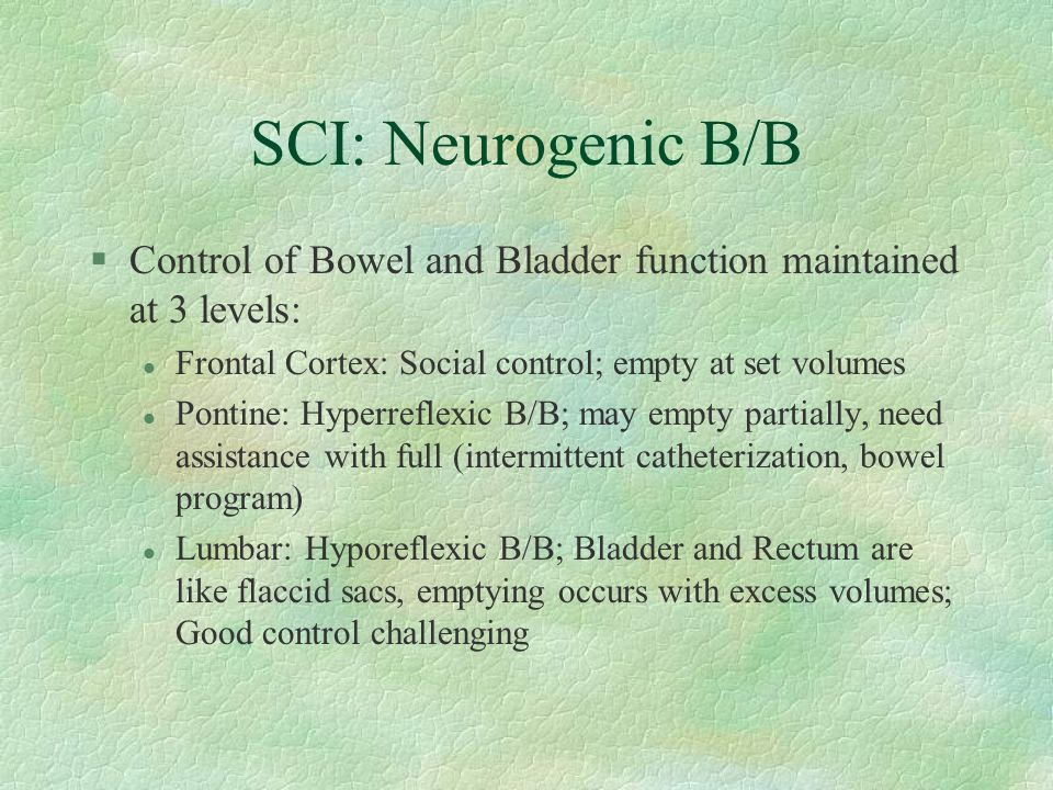 SCI: Neurogenic B/B §Control of Bowel and Bladder function maintained at 3 levels: l Frontal Cortex: Social control; empty at set volumes l Pontine: H