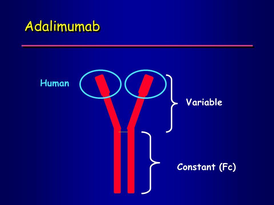 Constant (Fc) Variable Human AdalimumabAdalimumab