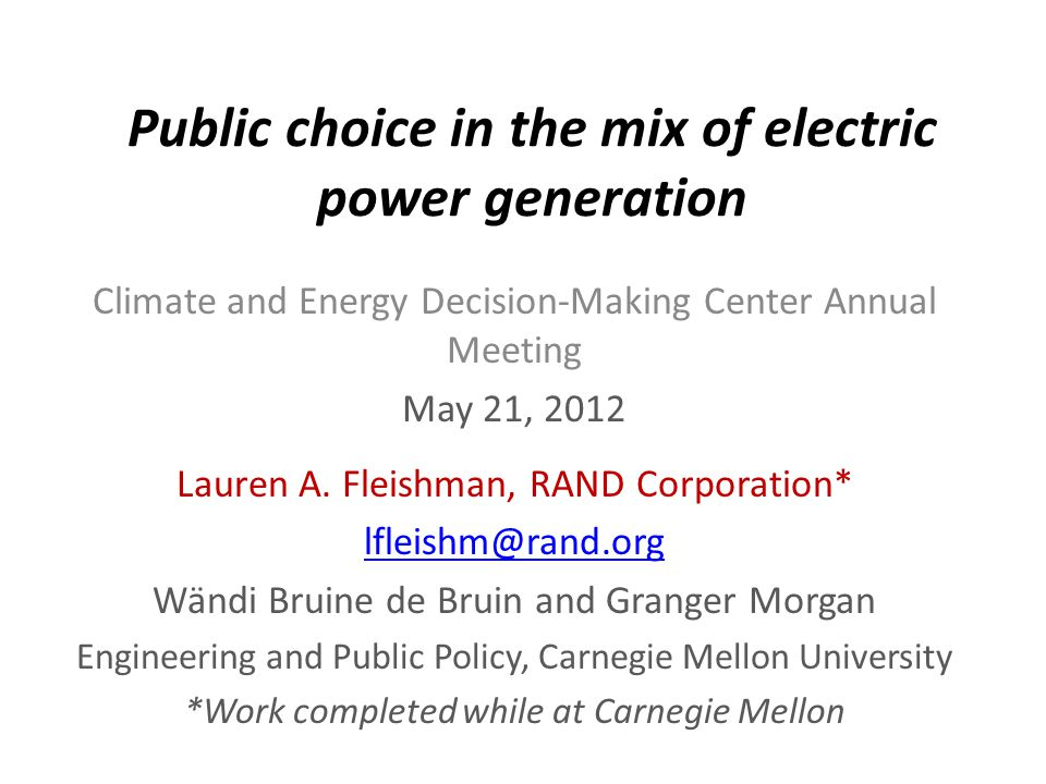 Public choice in the mix of electric power generation Climate and Energy Decision-Making Center Annual Meeting May 21, 2012 Lauren A.