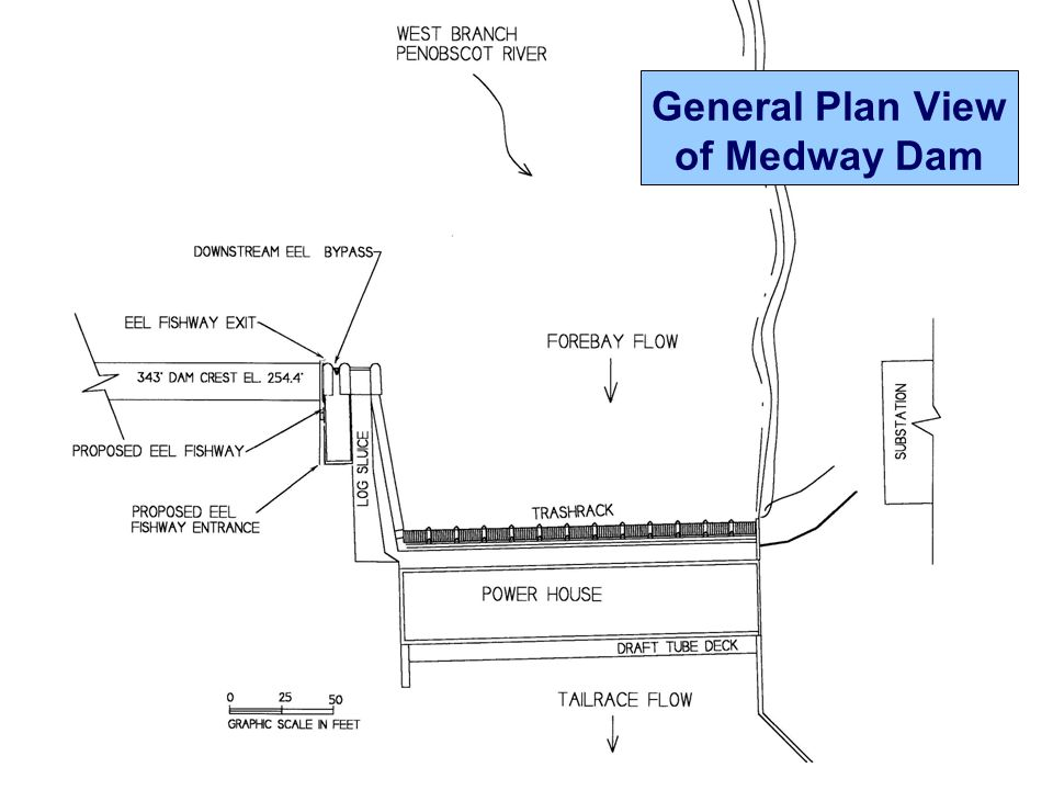 General Plan View of Medway Dam