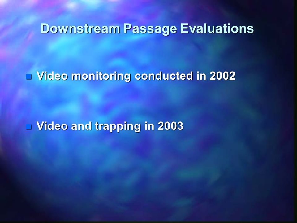 Downstream Passage Evaluations n Video monitoring conducted in 2002 –Reflective background used –Infrared lighting and supplemental red light –Tested with drogues –Real-time recording in six hour blocks –Monitored from August through mid-November