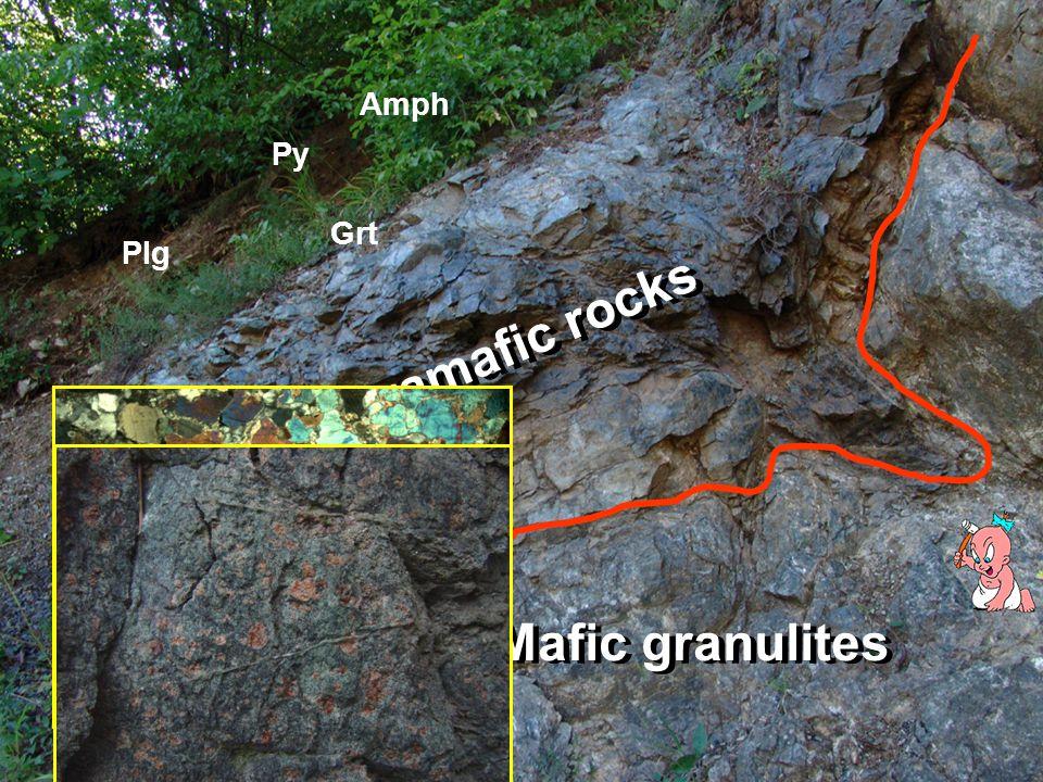Ultramafic rocks Mafic granulites Grt Py Plg Amph