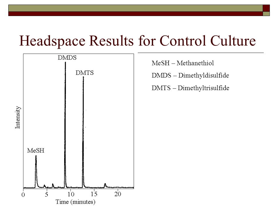 Headspace Results for Control Culture MeSH – Methanethiol DMDS – Dimethyldisulfide DMTS – Dimethyltrisulfide