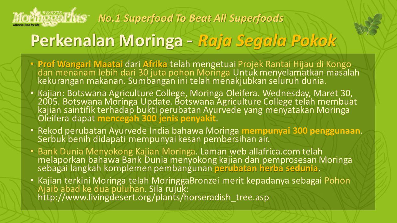 Perkenalan Moringa - Raja Segala Pokok Prof Wangari Maatai Afrika Prof Wangari Maatai dari Afrika telah mengetuai Projek Rantai Hijau di Kongo dan menanam lebih dari 30 juta pohon Moringa Untuk menyelamatkan masalah kekurangan makanan.