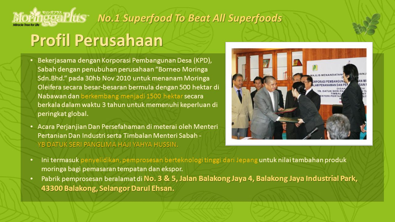Green Superfood – Testimony 1 No.1 Superfood To Beat All Superfoods
