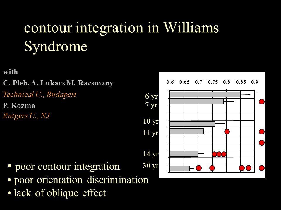 contour integration in Williams Syndrome with C. Pleh, A.