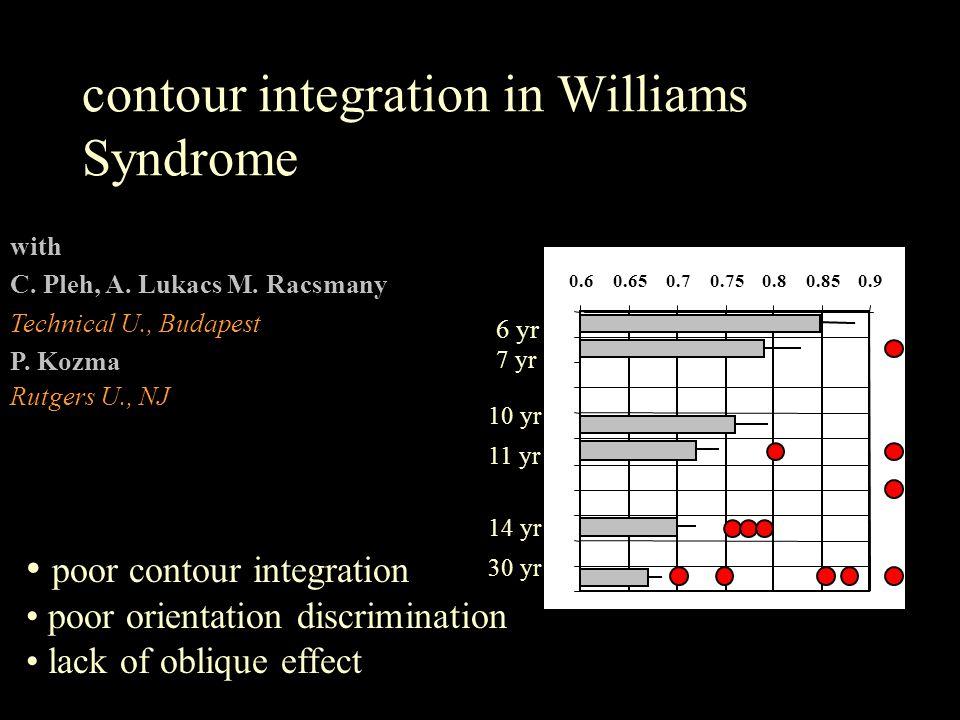 contour integration in Williams Syndrome with C. Pleh, A. Lukacs M. Racsmany Technical U., Budapest P. Kozma Rutgers U., NJ 0.60.650.70.750.80.850.9 6