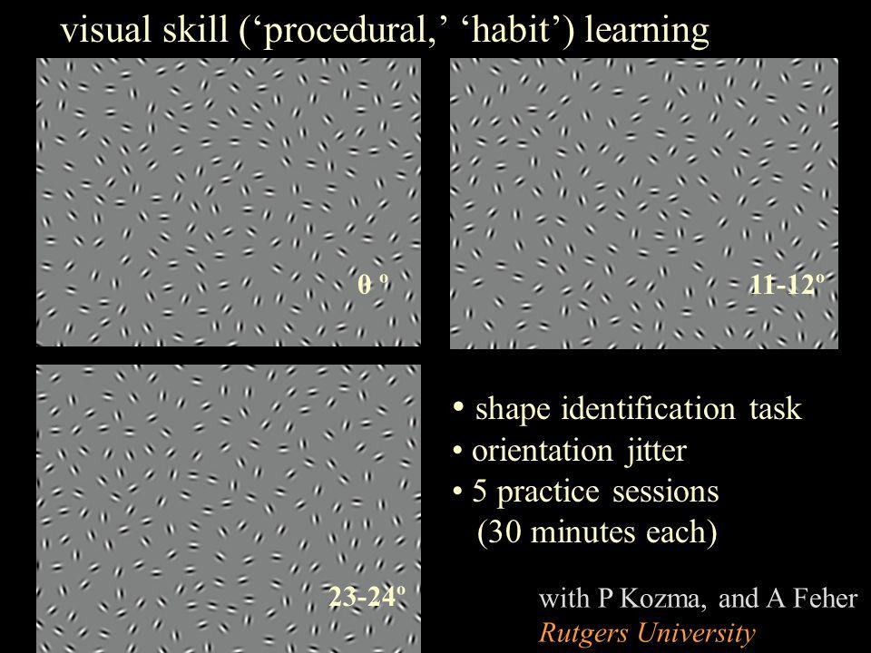 0 º 23-24º 11-12º shape identification task orientation jitter 5 practice sessions (30 minutes each) visual skill ('procedural,' 'habit') learning wit