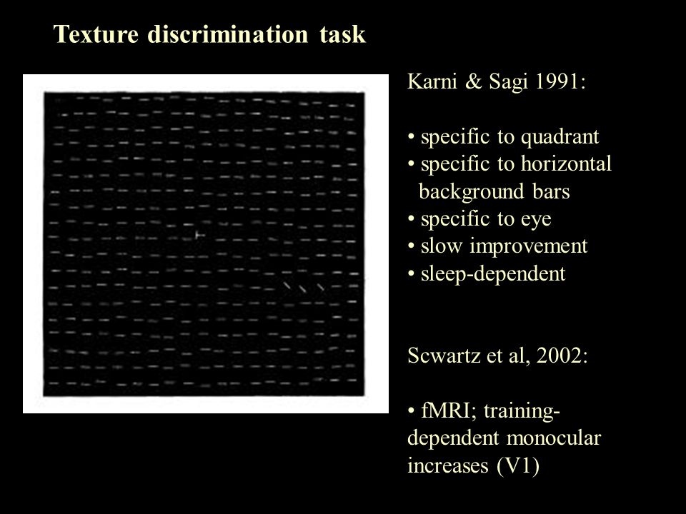 Texture discrimination task Karni & Sagi 1991: specific to quadrant specific to horizontal background bars specific to eye slow improvement sleep-dependent Scwartz et al, 2002: fMRI; training- dependent monocular increases (V1)
