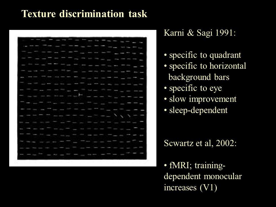 Texture discrimination task Karni & Sagi 1991: specific to quadrant specific to horizontal background bars specific to eye slow improvement sleep-depe
