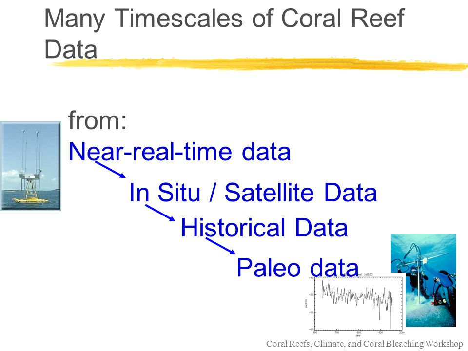 Coral Reefs, Climate, and Coral Bleaching Workshop NOAA Coral Reef Watch Paleodata: Puerto Rico, Virgin Islands Eakin, Swart, Quinn, Dodge, Halley (in progress) Caribbean Salinity Experiment (CASE) l tracking of water circulation and inputs from the sub- tropical Atlantic Gyre, cross equatorial thermohaline transport, and the temporal/spatial extent of the Western Hemisphere Warm Pool (WHWP) in the Caribbean.
