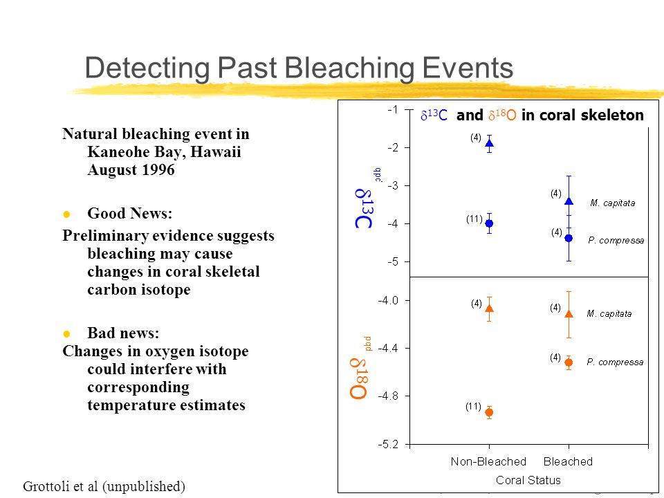 Coral Reefs, Climate, and Coral Bleaching Workshop Grottoli et al (unpublished)  13 C and  18 O in coral skeleton  13 C  18 O Natural bleaching event in Kaneohe Bay, Hawaii August 1996 l Good News: Preliminary evidence suggests bleaching may cause changes in coral skeletal carbon isotope l Bad news: Changes in oxygen isotope could interfere with corresponding temperature estimates Detecting Past Bleaching Events