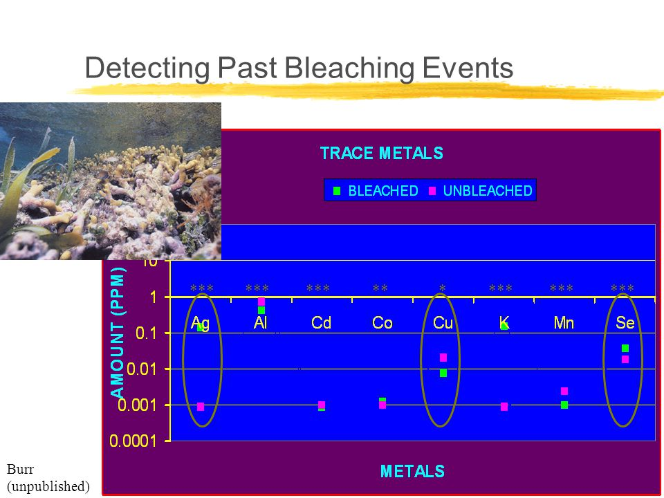 Coral Reefs, Climate, and Coral Bleaching Workshop Detecting Past Bleaching Events Burr (unpublished) *** * **