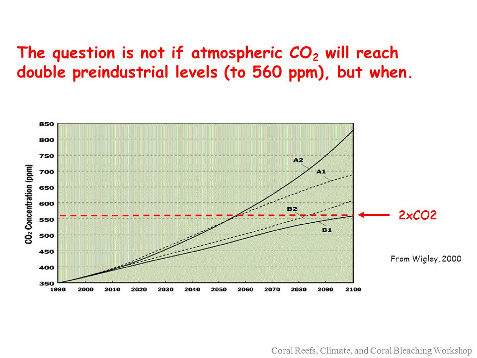 Coral Reefs, Climate, and Coral Bleaching Workshop The question is not if atmospheric CO 2 will reach double preindustrial levels (to 560 ppm), but when.