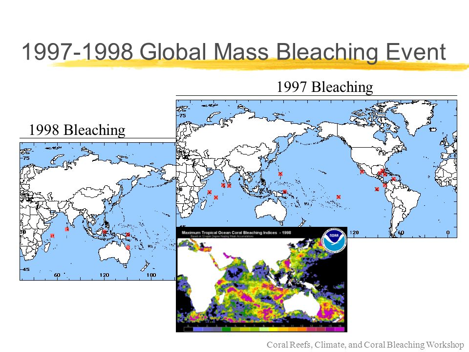 Coral Reefs, Climate, and Coral Bleaching Workshop What Does the Future Hold l The last 1000 years compared to IPCC 2000 scenarios After Bradley 2000