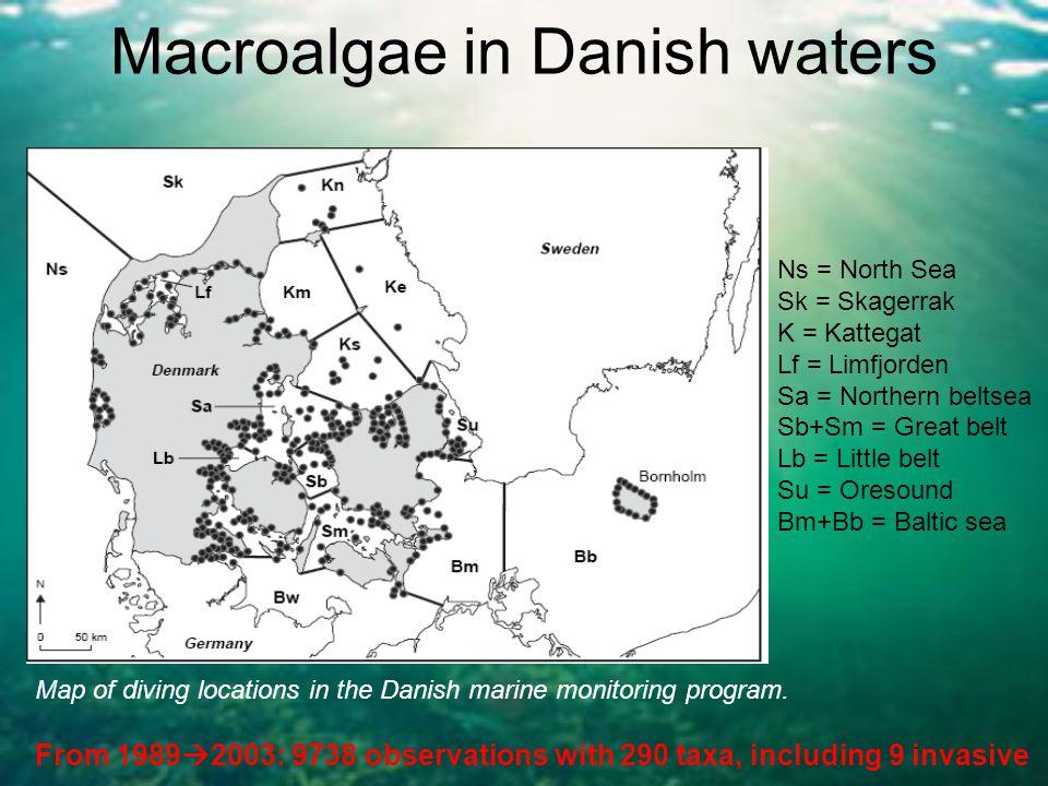 Macroalgae in Danish waters Ns = North Sea Sk = Skagerrak K = Kattegat Lf = Limfjorden Sa = Northern beltsea Sb+Sm = Great belt Lb = Little belt Su =