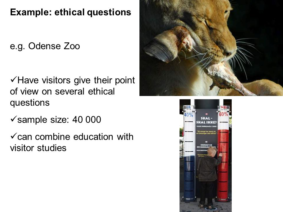 Example: ethical questions e.g.