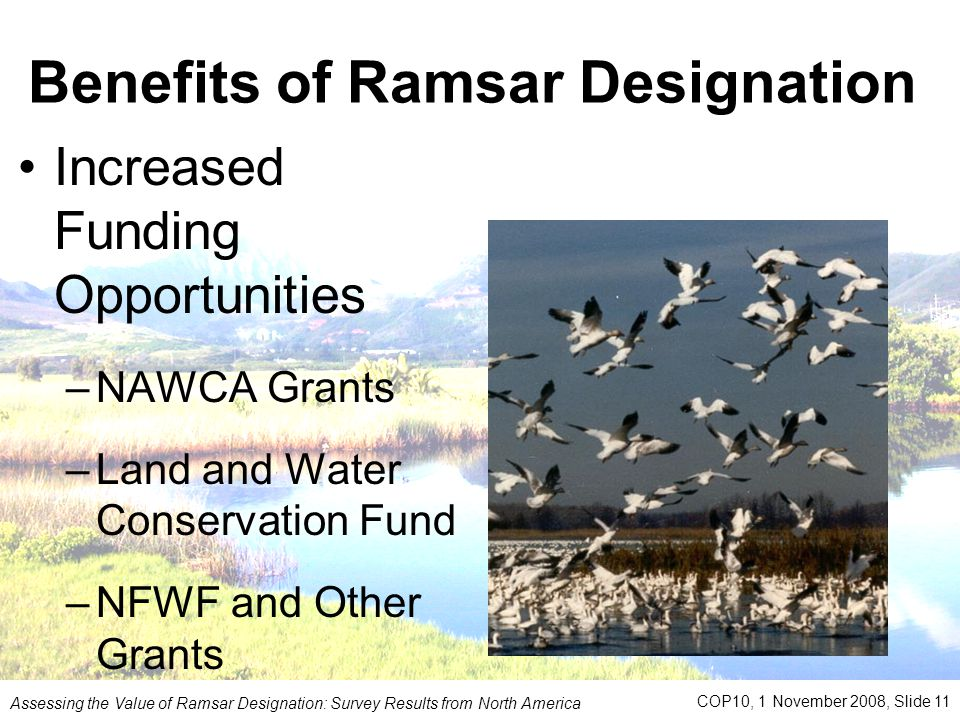 Benefits of Ramsar Designation Increased Funding Opportunities –NAWCA Grants –Land and Water Conservation Fund –NFWF and Other Grants Assessing the Value of Ramsar Designation: Survey Results from North America COP10, 1 November 2008, Slide 11,