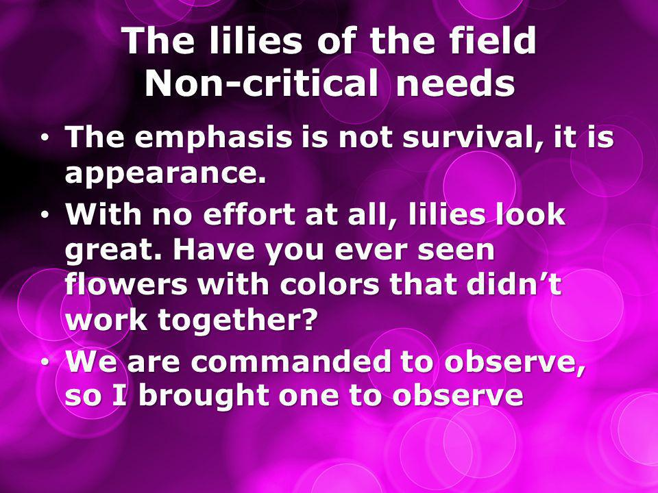 The lilies of the field Non-critical needs The emphasis is not survival, it is appearance.
