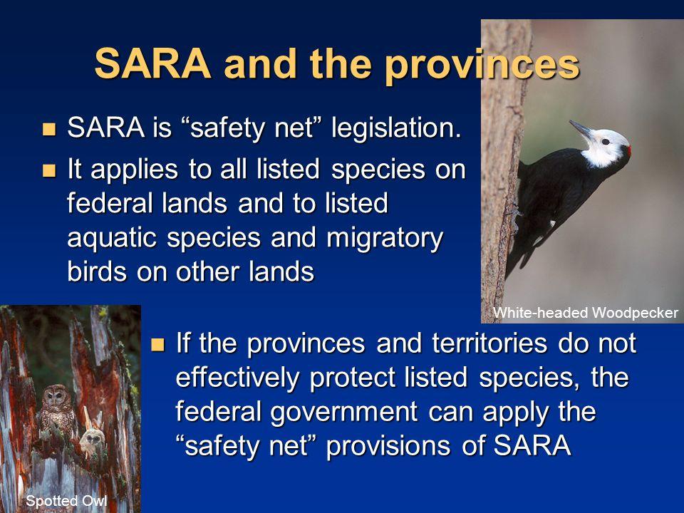 SARA and the provinces SARA is safety net legislation.