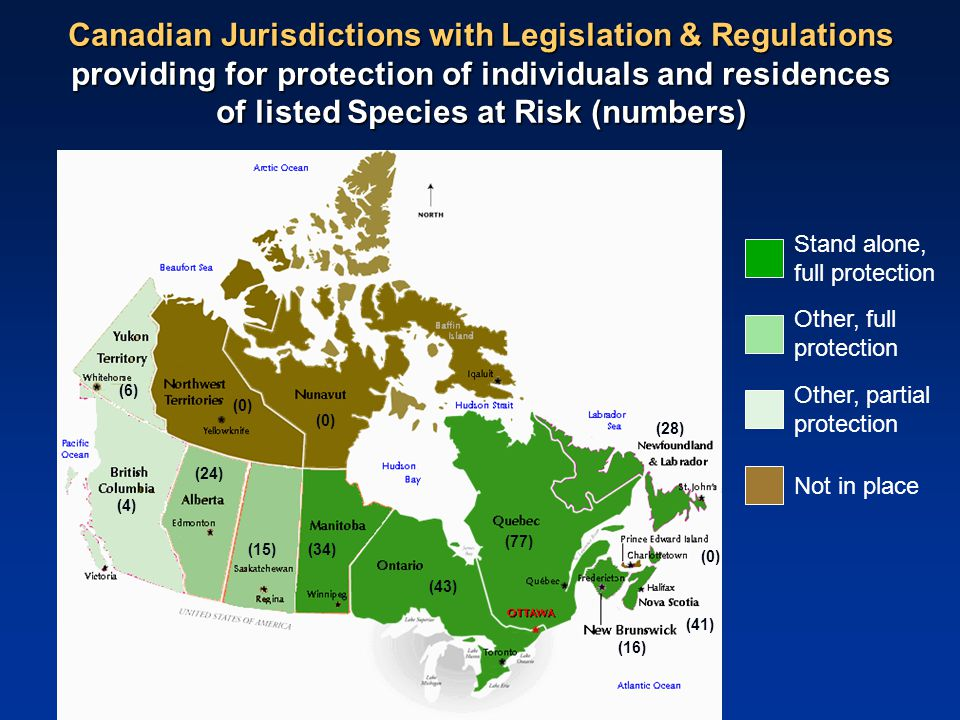 Canadian Jurisdictions with Legislation & Regulations providing for protection of individuals and residences of listed Species at Risk (numbers) Stand alone, full protection Other, full protection Other, partial protection Not in place (4) (6) (0) (28) (0) (41) (16) (77) (0) (43) (34)(15) (24)