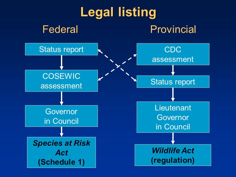 Legal listing COSEWIC assessment CDC assessment Governor in Council Lieutenant Governor in Council Species at Risk Act (Schedule 1) Wildlife Act (regulation) FederalProvincial Status report