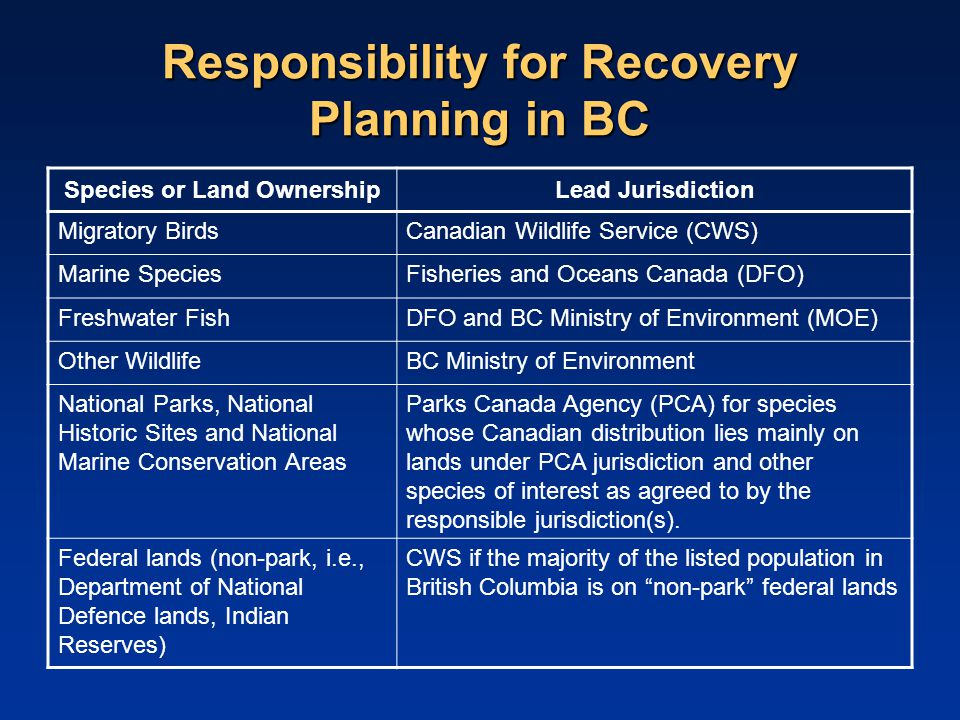 Responsibility for Recovery Planning in BC Species or Land OwnershipLead Jurisdiction Migratory BirdsCanadian Wildlife Service (CWS) Marine SpeciesFisheries and Oceans Canada (DFO) Freshwater FishDFO and BC Ministry of Environment (MOE) Other WildlifeBC Ministry of Environment National Parks, National Historic Sites and National Marine Conservation Areas Parks Canada Agency (PCA) for species whose Canadian distribution lies mainly on lands under PCA jurisdiction and other species of interest as agreed to by the responsible jurisdiction(s).