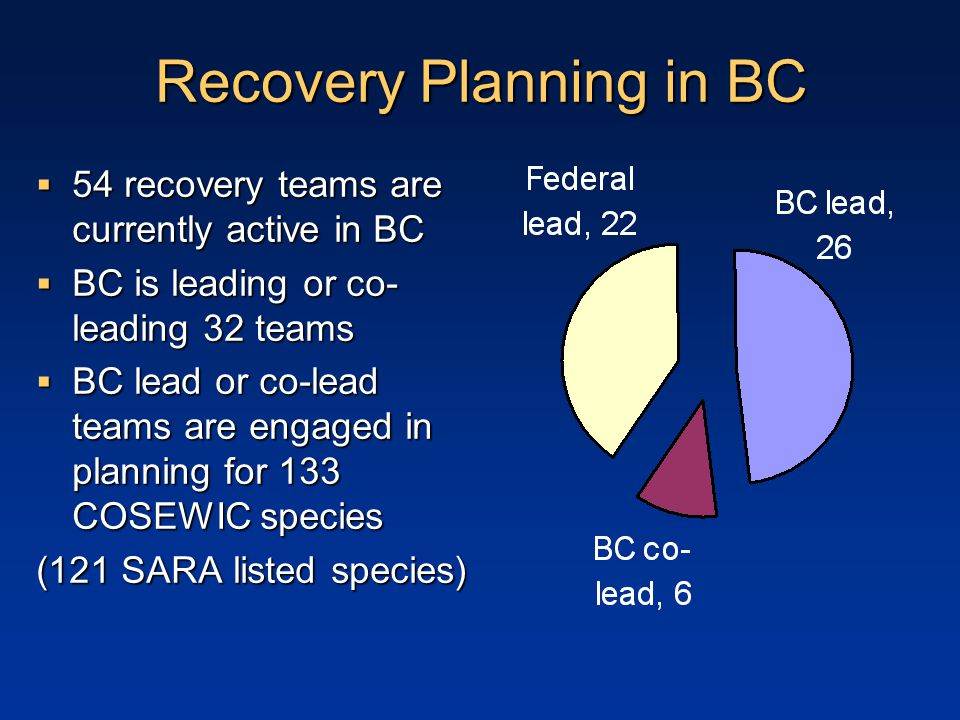 Recovery Planning in BC  54 recovery teams are currently active in BC  BC is leading or co- leading 32 teams  BC lead or co-lead teams are engaged in planning for 133 COSEWIC species (121 SARA listed species)