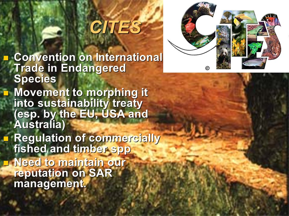 CITES Convention on International Trade in Endangered Species Convention on International Trade in Endangered Species Movement to morphing it into sustainability treaty (esp.