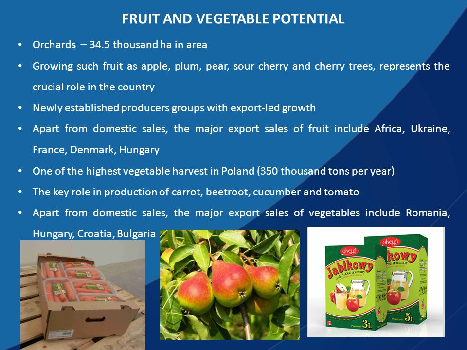 FRUIT AND VEGETABLE POTENTIAL Orchards – 34.5 thousand ha in area Growing such fruit as apple, plum, pear, sour cherry and cherry trees, represents the crucial role in the country Newly established producers groups with export-led growth Apart from domestic sales, the major export sales of fruit include Africa, Ukraine, France, Denmark, Hungary One of the highest vegetable harvest in Poland (350 thousand tons per year) The key role in production of carrot, beetroot, cucumber and tomato Apart from domestic sales, the major export sales of vegetables include Romania, Hungary, Croatia, Bulgaria