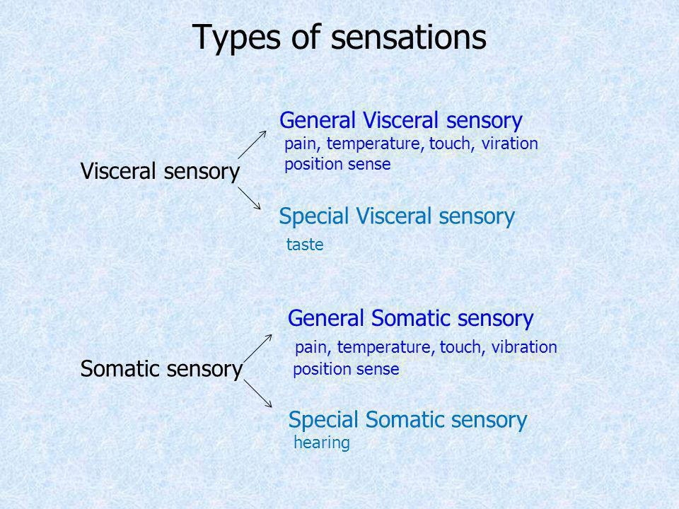 Types of sensations Visceral sensory Somatic sensory General Visceral sensory pain, temperature, touch, viration position sense Special Visceral senso