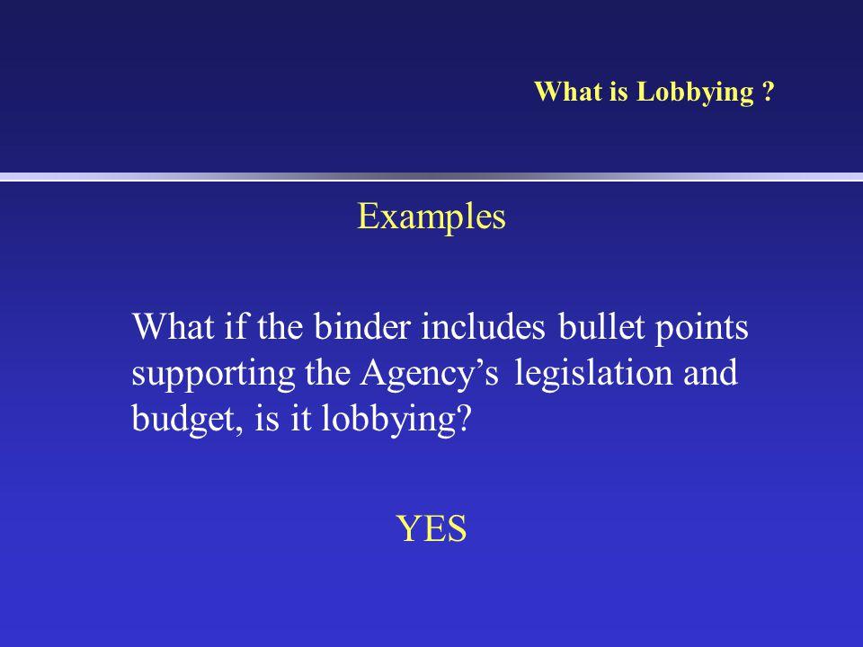 What is Lobbying .