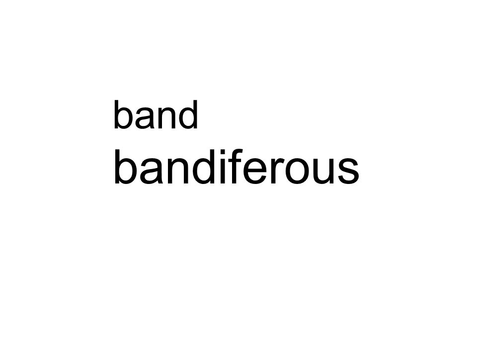 band bandiferous different
