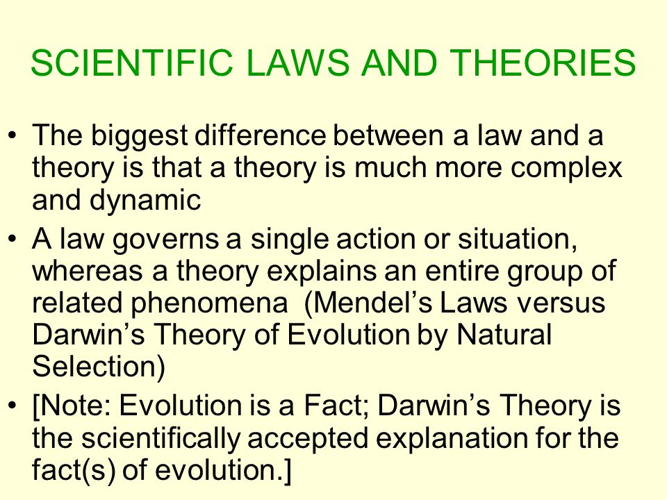 SCIENTIFIC LAWS AND THEORIES The biggest difference between a law and a theory is that a theory is much more complex and dynamic A law governs a singl