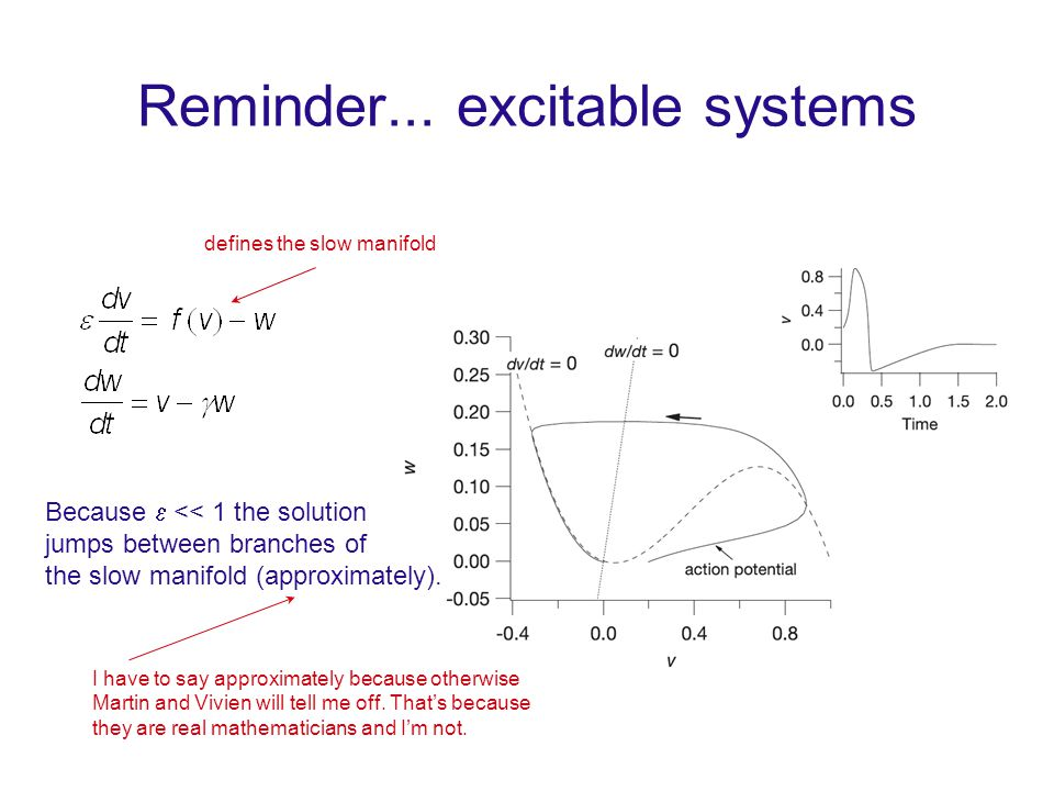 Reminder... excitable systems defines the slow manifold Because  << 1 the solution jumps between branches of the slow manifold (approximately). I hav